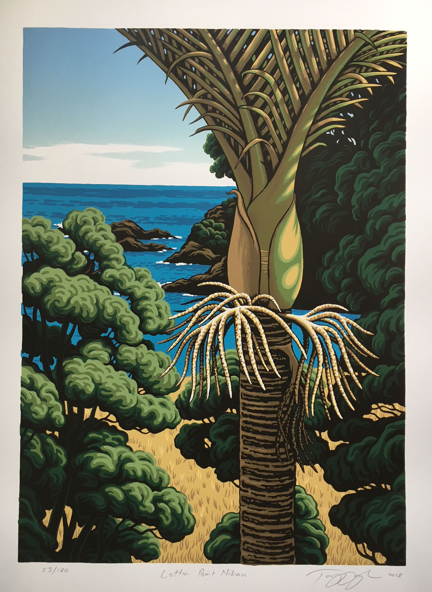 Lottin Point Nikau By Tony Ogle New Zealand Fine Prints