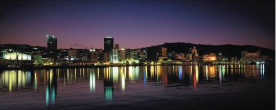 Wellington Lights Photograph