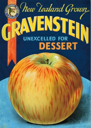 Nz Grown Apples Vintage Advertising Poster New Zealand