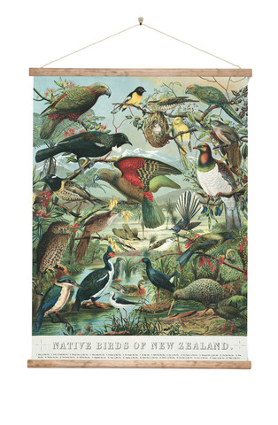 Native Birds Of Nz Canvas Art Print Ready To Hang New