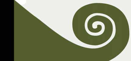 Koru Flag New Zealand Fine Prints